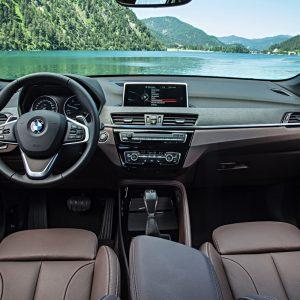 Защитное стекло BMW X1 (F48)